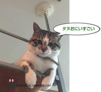 tokuizawa333.jpg