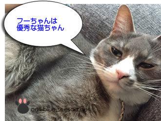 tokuwaza555.jpg